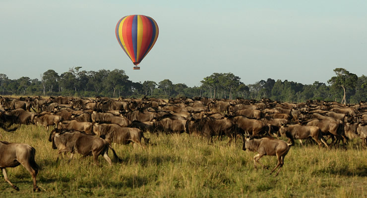 - Balloon Safaris