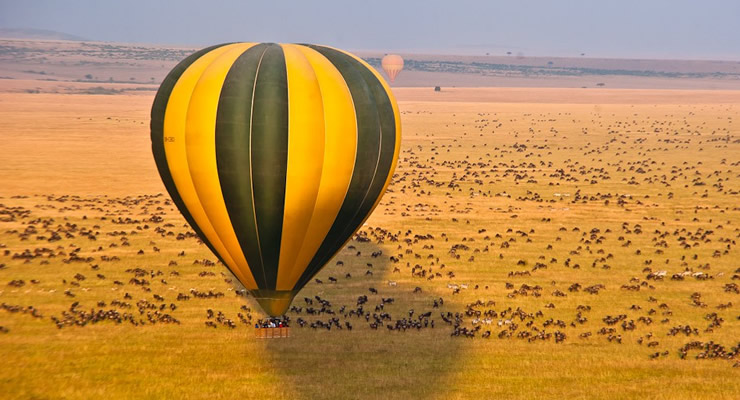 Wildebeest Migration - Balloon Safaris